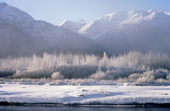 The Chilkat Valley under a covering of snow, with mountains behind. Alaska.