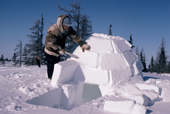 Building an igloo with hard snow & a big knife to cut blocks. Churchill. Canada.