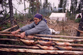 A Cree woman, Elizabeth Brien, preparing to smoke white fish on racks at a camp. Quebec, Canada. 1988