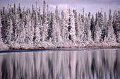 Snow covered Boreal Forest reflected in the waters of Lake Bourinot. Quebec. Canada. 1988