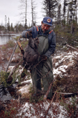 Cree trapper, Abel Brien, removes a beaver he has caught from a trap. Quebec, Canada. 1988