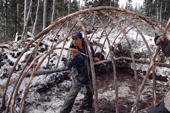 Abel Brien, a Cree hunter helped by his wife, Elizabeth, contructing framework of a traditional winter tent. N. Quebec, Canada. 1988