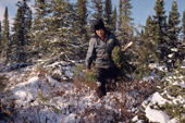 Abel Brien, a Cree hunter with a small spruce tree. Sub-Arctic, Quebec, Canada. 1988