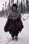 Cree trapper, Abel Brien, with pelts of autumn catch of Pine Martens. Sub-Arctic, Quebec, Canada. 1988