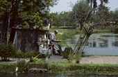 A gardener in his water allotment, initially built by monks. Bourges, France. 1983