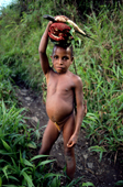 Yali boy carries garden produce back to his village. Irian Jaya, Indonesia. 1990