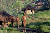 Yali men wearing Penis sheaths in the village in the Heluk Valley. Irian Jaya. Indonesia. 1990