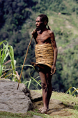 Yali man in a penis sheath and rattan hoops. Seng Valley, Irian Jaya, Indonesia. 1990