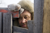 Isak Triumf, a Saami reindeer herder, looks through the gap in a gate at a reindeer corral near Kautokeino. Finnmark, North Norway. 2007