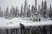 In bad autumn weather, Pinip, an Innu hunter, checks his traps out in the forest. Southern Labrador, Canada. 1997