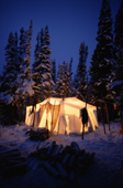 At dusk in boreal forest, light shines through a tent at an Innu autumn hunting camp. Southern Labrador, Canada. 1997