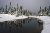 A small river winds its way through snow covered boreal forest. Labrador, Canada. 1997