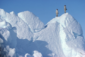 Inuit hunters in furs, climb an iceberg to scan sea-ice for game, whilst on a hunting trip. N.W. Greenland. 1980