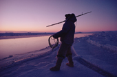 Holding a harpoon, an Inuit hunter waits by open water for a seal. N.W. Greenland. 1986