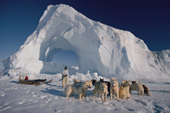 An Inuit hunter untangles the traces of his dog team infront of an iceberg. Savissivik, N.W. Greenland. 1997