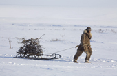 Yashka, a young Chukchi reindeer herder, dragging firewood (willow) back to camp on his sled. Chukotskiy Peninsula, Chukotka, Siberia, Russia