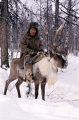 An Evenk man riding a draft reindeer in the forest. Evenkiya, Siberia, Russia. 1997