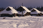Snow covered wooden houses in the Evenk native village of Surinda, Evenkiya, Siberia, Russia. 1997