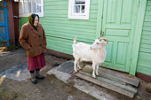 Maria, an elderly woman,  at her home in Pogost Village with her goat Rosa. Ryazan Province, Russia. 2006