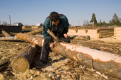 A forestry worker stripping the bark off a pine log near Gus-Zheleznyy. Ryazan Province, Russia. 2006