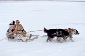 Saibore Moibe, a Nganasan elder, driving a dog sled on the frozen Kheta River. Taymyr, Northern Siberia, Russia. 2004