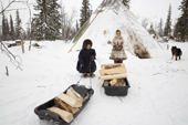 Albina Valeeva, a young Komi girl, and her brother Matvey (left), drag firewood in a sled back to their family's tent at a winter camp in the forest. Priuralsky District, Yamal, NW Siberia.