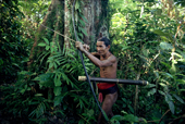 Mentawai Medicine Man hunts in the rainforest with bow & arrow. Siberut Is. Indonesia