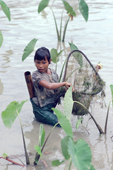 Young Mentawai girl fishing in a flooded taro garden. Siberut Is. Indonesia