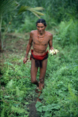 Mentawai Medicine Man gathering medicinal plants in the rainforest.  Siberut, Indonesia.