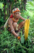 Mentawai Medicine man makes display of plants & feathers to call spirits to help him. Siberut Island, Indonesia.
