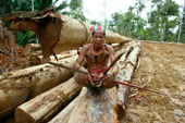 Mentawai medicine man on rainforest meranti logs. Siberut Island, Indonesia.
