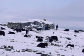 Snow covers the Yak herders summer shelters. Nimaling Plateau. Ladakh. India.